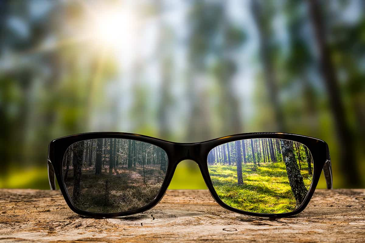 A pair of glasses with a reflection of forest trees in them
